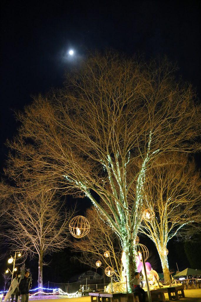 月も綺麗でした