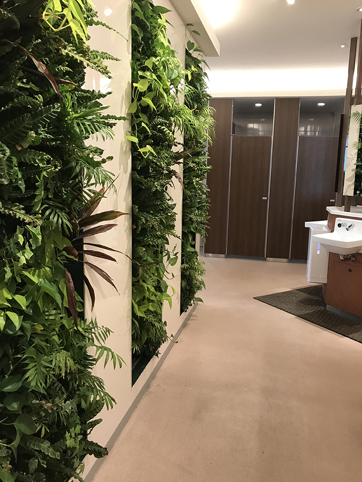 こちらはフェイクの緑。素敵な壁