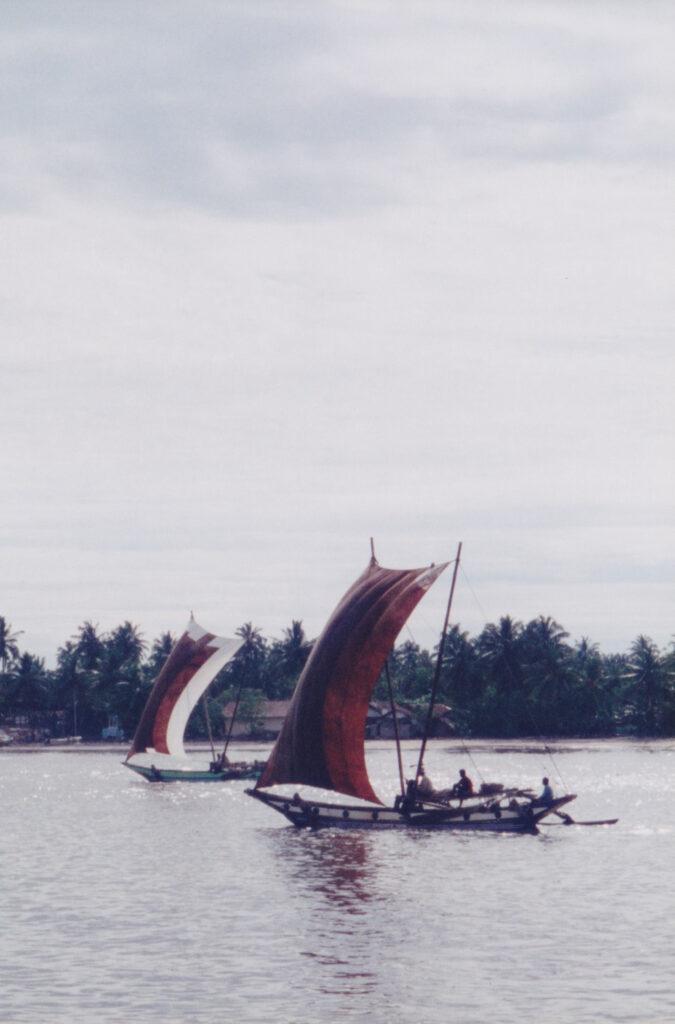 帆船での漁